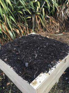 Compost Planter Box
